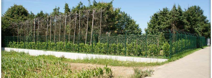clotures-de-jardin-pose-luxembourg-paysagiste (41)