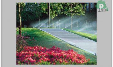 Eclairage de jardin au Luxembourg Paysagiste Jardinier